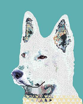 White shepherd by Claudia Schoen