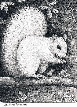 Lee Pantas - White Squirrel