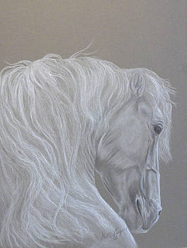 White Stallion Head by Gail Finger