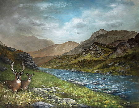 White Tail Meadow by David Jansen