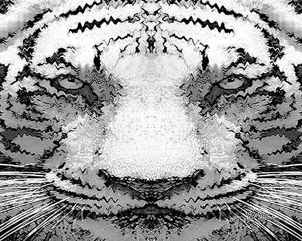 White Tiger #161 by Barbara Tristan