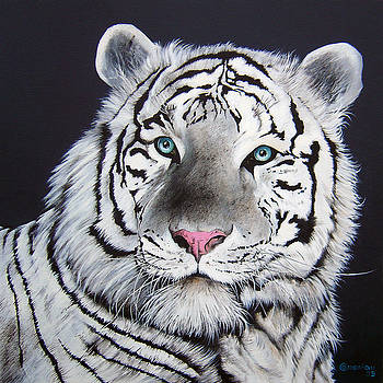 White Tiger by Antonio Gomes Comonian
