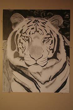 White Tiger by Brandy LeBlue