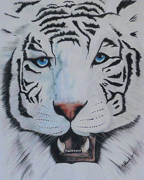 White Tiger by Charles Hubbard