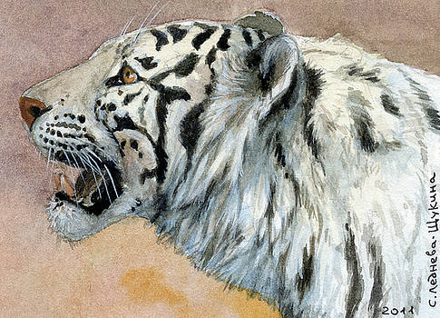 White Tigress aceo by Svetlana Ledneva-Schukina