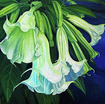White Trumpets by Nancy Viola