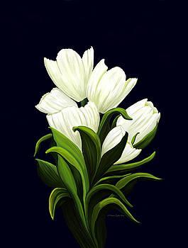 White Tulips by Patricia Griffin Brett