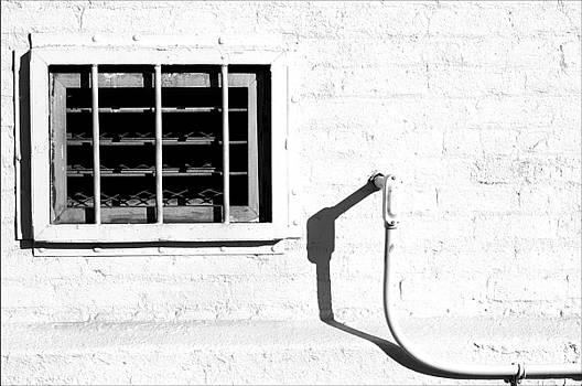 White Wall  by Rhea Malinofsky