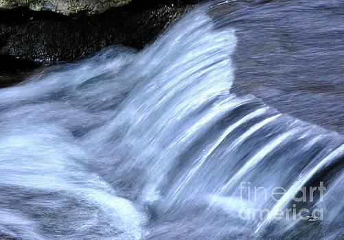 White Water at Cheekwood by Wanda-Lynn Searles