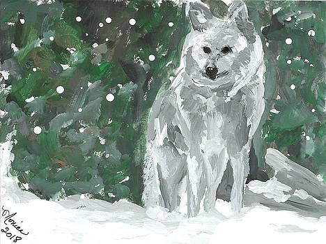 White Wolf Impressionism by Monica Resinger