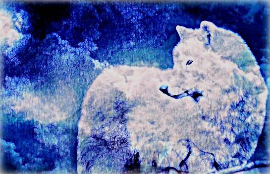WBK - White Wolf In Snow