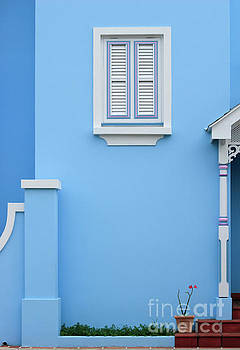 White wooden window shutter on blue house, Barbados by Carl Chapman