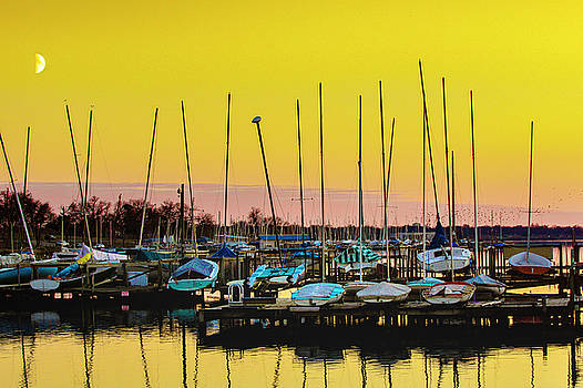 Whiterock Marina by Aaron Mahlon Arts