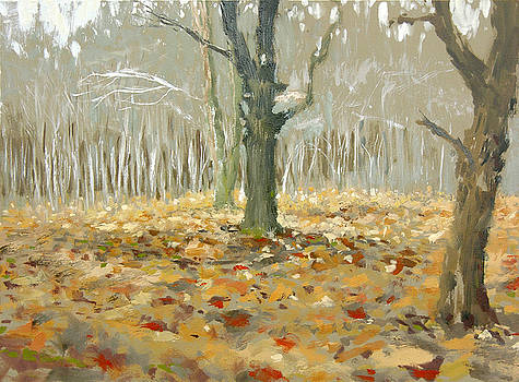 Whitnall Park No.2 by Anthony Sell