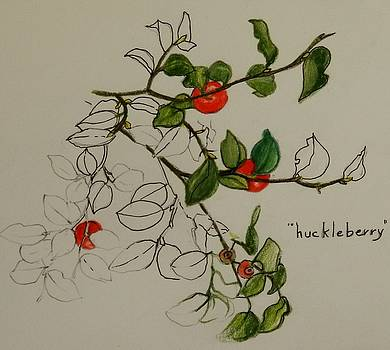 Who Doesn't Love the Huckleberry by Catherine Robertson