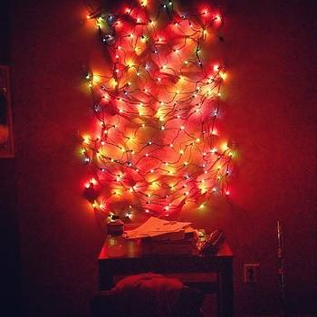 Who Said You Can't Use Bush Lights To by Sarah Verdejo
