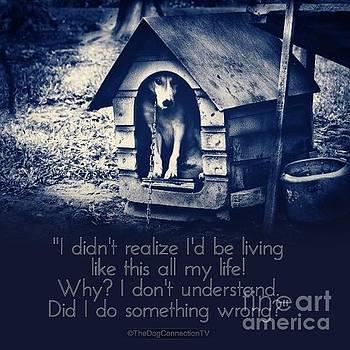 Kathy Tarochione - Why am I living like this