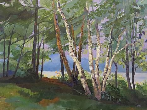 Wiawaka by Terri Messinger