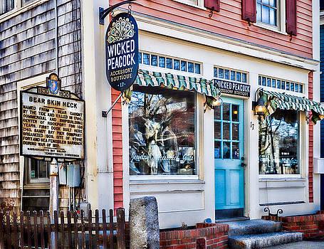 Wicked Peacock at Bear Skin Neck in Rockport by Nancy De Flon