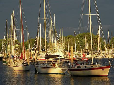 Wickford Harbor 2 by Diane Valliere
