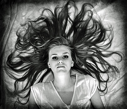 Wide Awake in Dreamland by Shelly Wickens