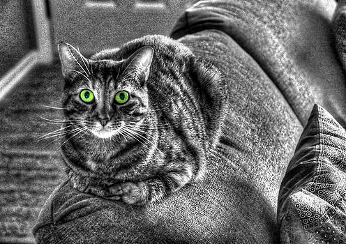 Wide Eyes by J Laughlin