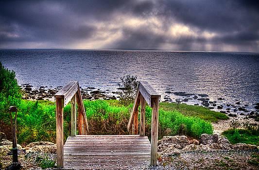 Wide Foggy Morning by Larry Underwood