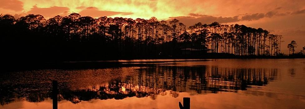 Wide Sunset by Robbie L Rogers