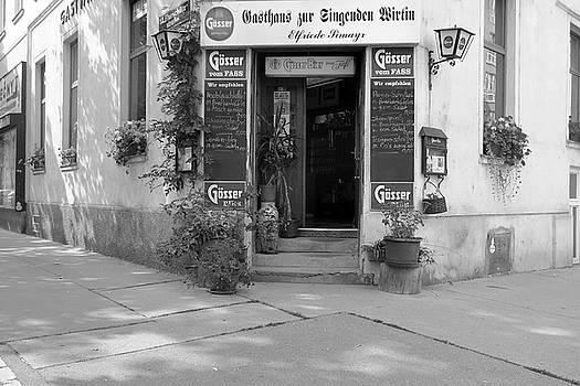 Christian Slanec - Wiener Wirtshaus