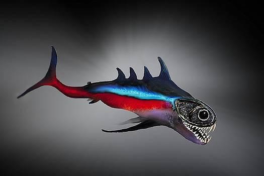 Wierd Fish by Chris Hall