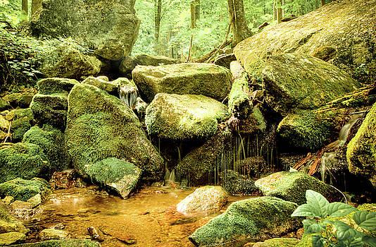 David Hahn - Wigham Falls  II