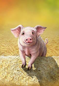 Wilbur by Cara Bevan