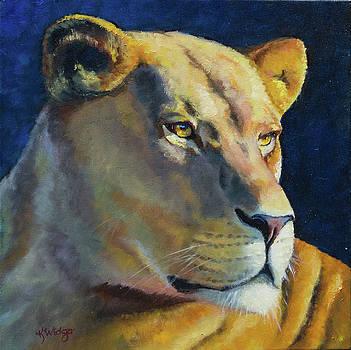 Wild African Lioness by Katy Widger