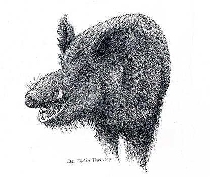 Lee Pantas - Wild Boar