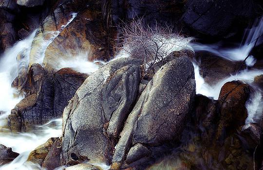 Wild Cat Cascades by Nick Borelli