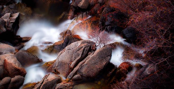 Wild Cat Falls by Nick Borelli