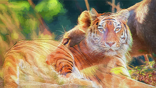 Wild Cats - Painting by Ericamaxine Price