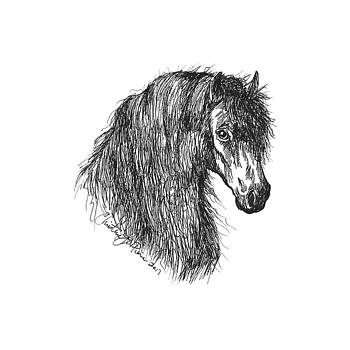 Wild by Christine StPierre