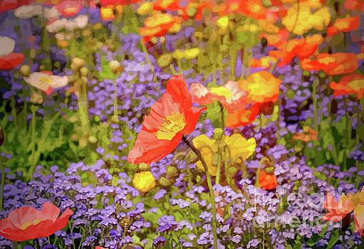 Wild Flowers In A Garden by Clive Littin