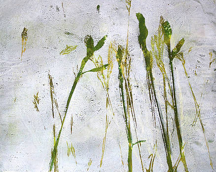 Nancy Merkle - Wild Grass 2