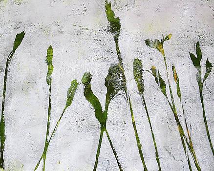 Nancy Merkle - Wild Grass 4