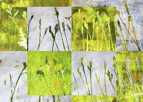 Wild Grass Collage 3 by Nancy Merkle