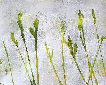 Nancy Merkle - Wild Grass Series 1