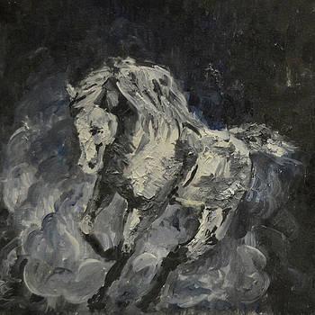 Wild horse by Ann Bakina