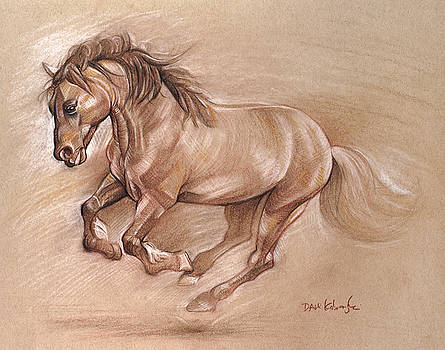 Wild Horse I - Wildlife Drawing by Dave Kobrenski