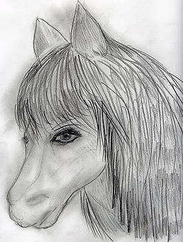 Wild Horse by Sonya Chalmers