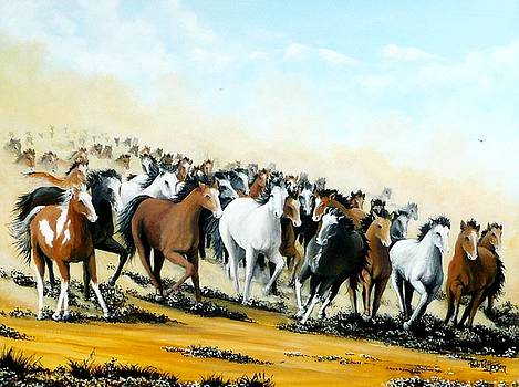Wild Horses by Bob Patterson