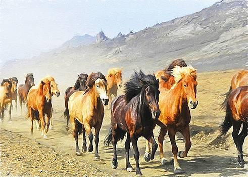 Wild Horses by Charmaine Zoe