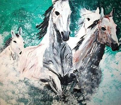 Wild Horses by Dana DeCecco