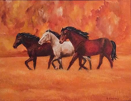 Wild Horses by Ellen Canfield